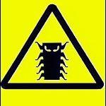 Bug Y2K