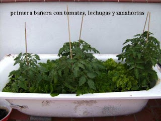 Una docena de ideas para crear un huerto urbano o macetohuerto con materiales reciclados Ba%C3%B1era-Huerto