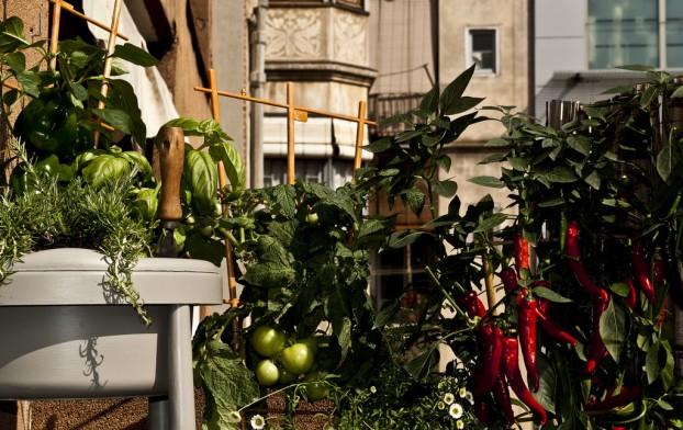 Una docena de ideas para crear un huerto urbano o macetohuerto con materiales reciclados Huerta-Urbana-622x392