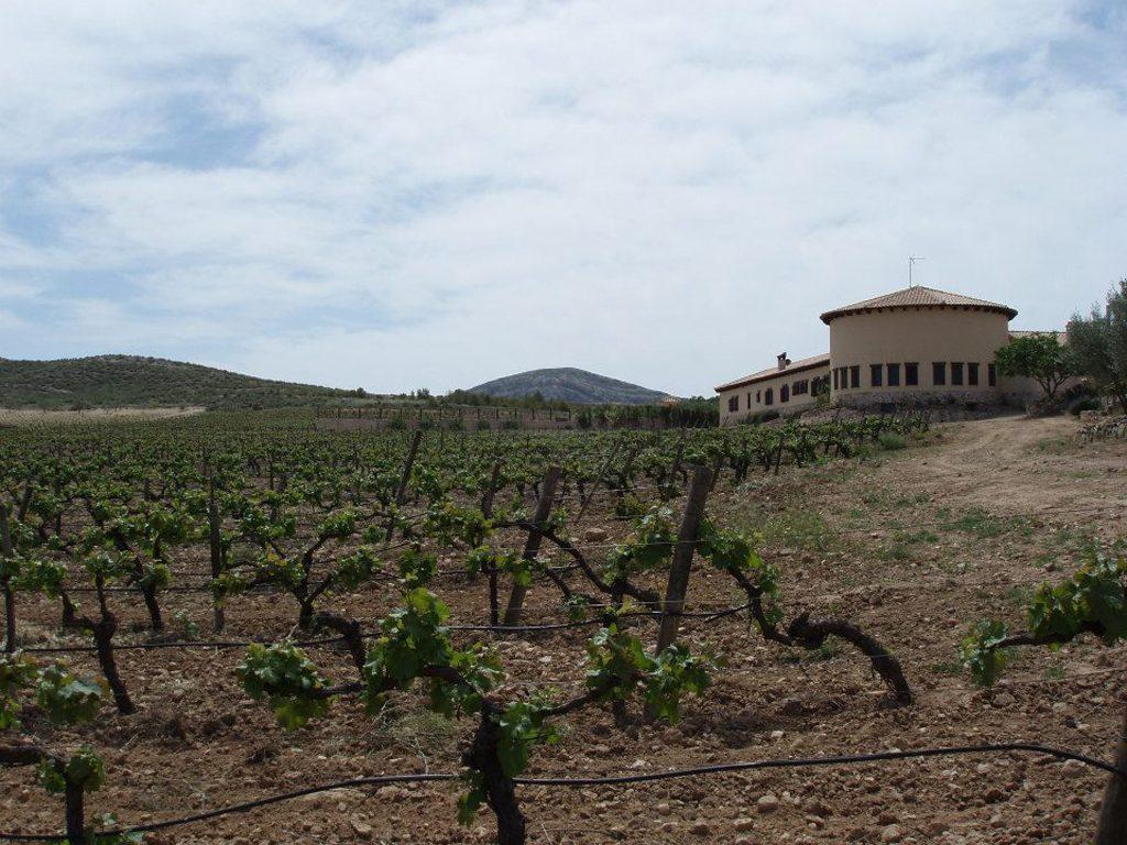 Mainetes (Cuenca)