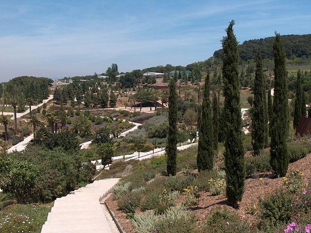 Una docena de jardines bot nicos para visitar en espa a for Barcelona jardin botanico