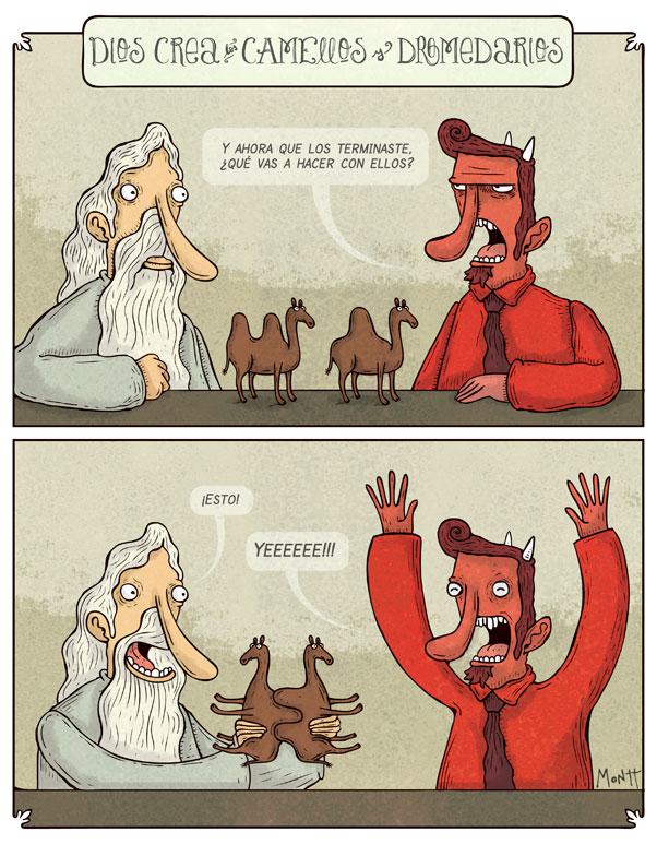 Dios Crea Camellos y Dromedarios